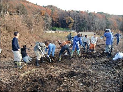 digging.jpgのサムネール画像